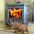 Progress Hybrid Wood Stove- Romano's Dog Customer Install